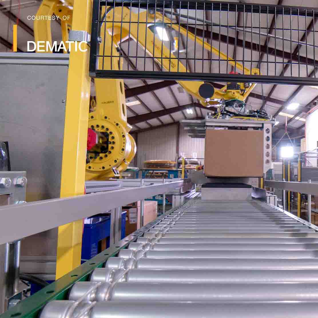 Robotic Palletizing 2 - About Dematic - Shoppa's Material Handling